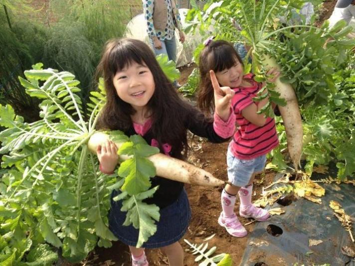 おさんぽ農場 -一日農業体験ツアー-